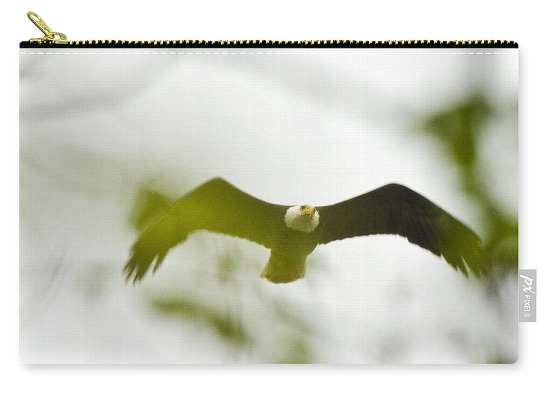 Bald Eagle Carry-all Pouch featuring the photograph Bald Eagle Flying To Perch by Crystal Heitzman Renskers