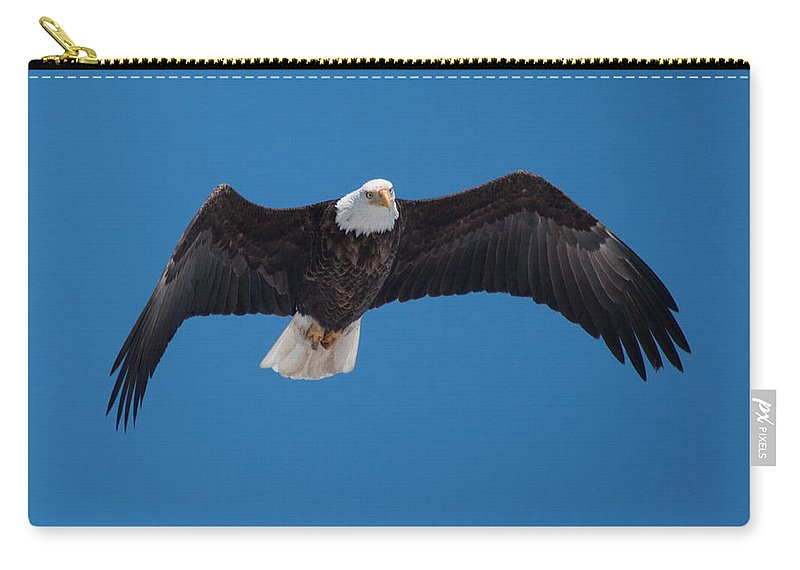 Bald Eagle Carry-all Pouch featuring the photograph Bald Eagle In Flight 4 by Ronald Grogan