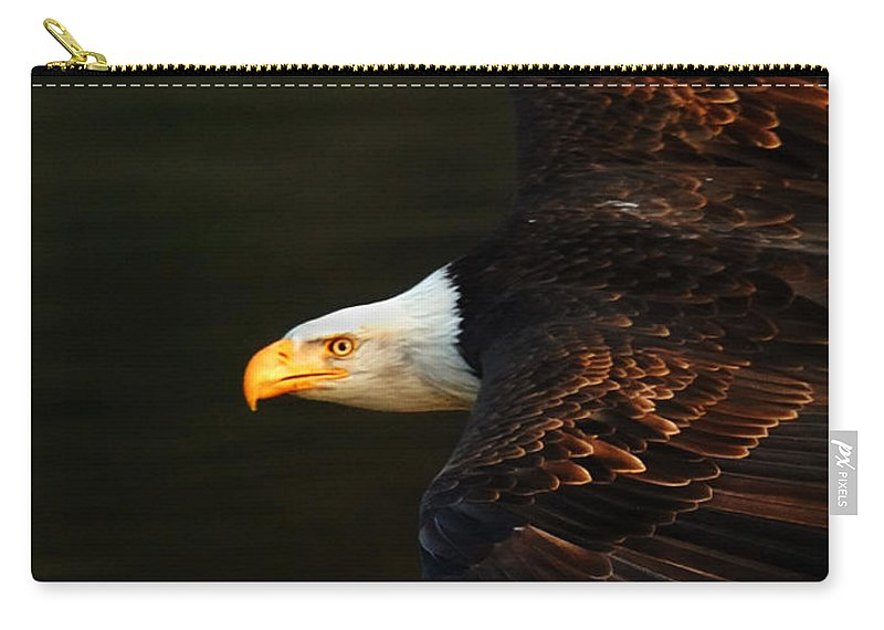 Eagle Carry-all Pouch featuring the photograph Bald Eagle In Flight by Bob Christopher