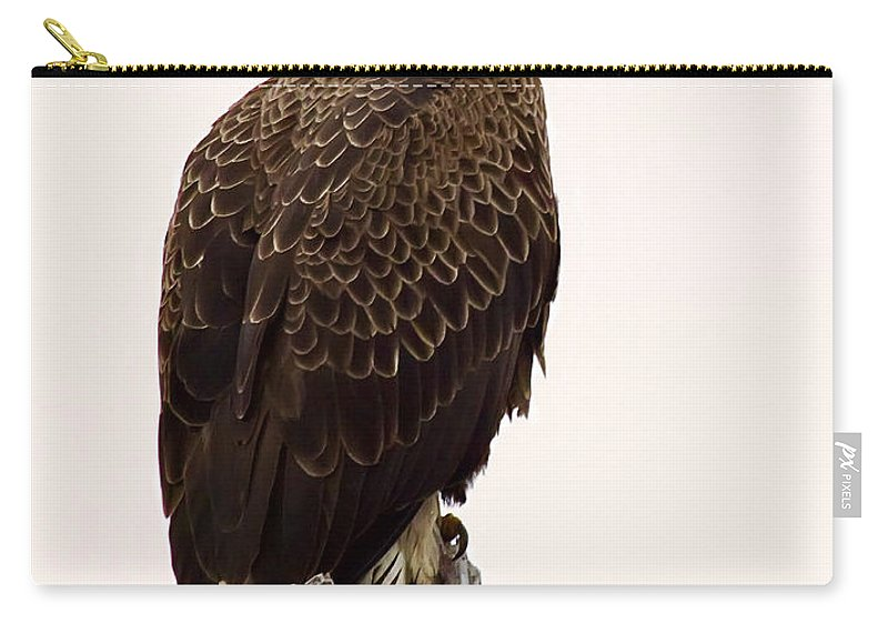 Bald Eagle Carry-all Pouch featuring the photograph Bald Eagle On A Snag by John Vose