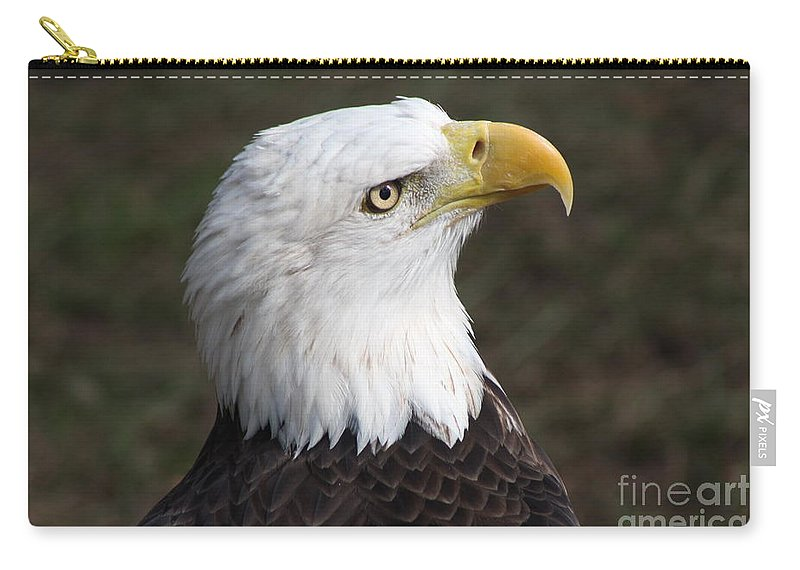 Eagle Carry-all Pouch featuring the photograph Bald Eagle Portrait by Christiane Schulze Art And Photography