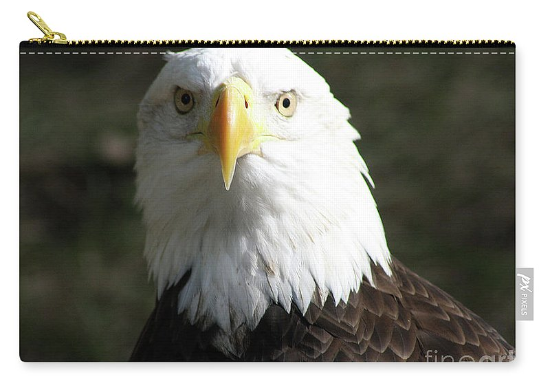Bald Eagle Carry-all Pouch featuring the photograph Bald Eagle Profile by Christiane Schulze Art And Photography