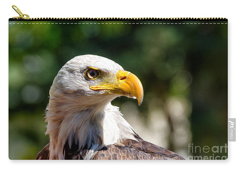 Bald Carry-all Pouch featuring the photograph Bald Eagle Profile by Les Palenik