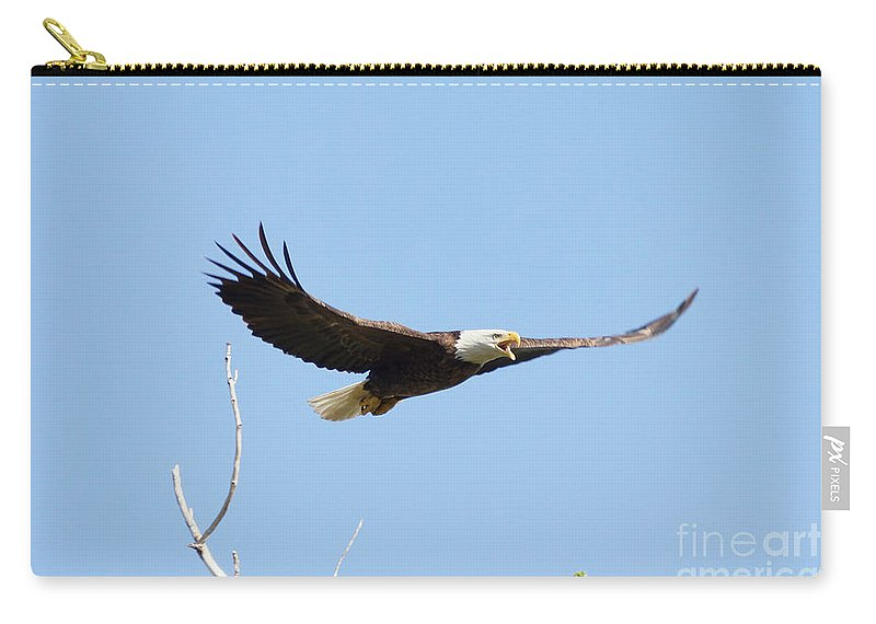 Eagle Carry-all Pouch featuring the photograph Bald Eagle Soaring Over The Trees by Lori Tordsen