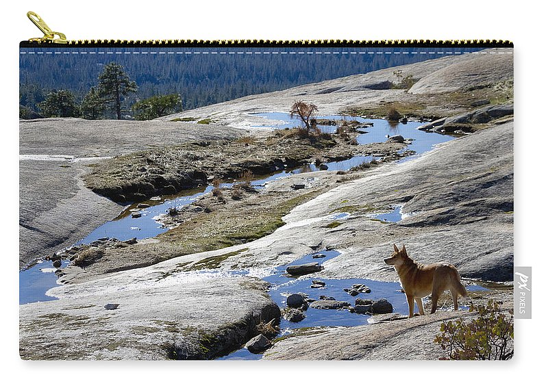 Dog Carry-all Pouch featuring the photograph Bald Rock Lookout by Robert Woodward