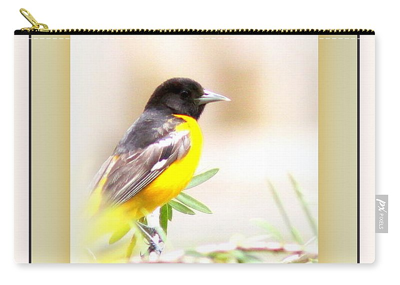 Baltimore Oriole Carry-all Pouch featuring the photograph Baltimore Oriole 4348-11 - Bird by Travis Truelove