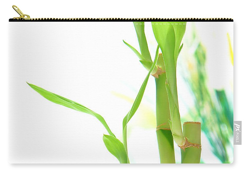 Bamboo Carry-all Pouch featuring the photograph Bamboo Stems And Leaves by Olivier Le Queinec