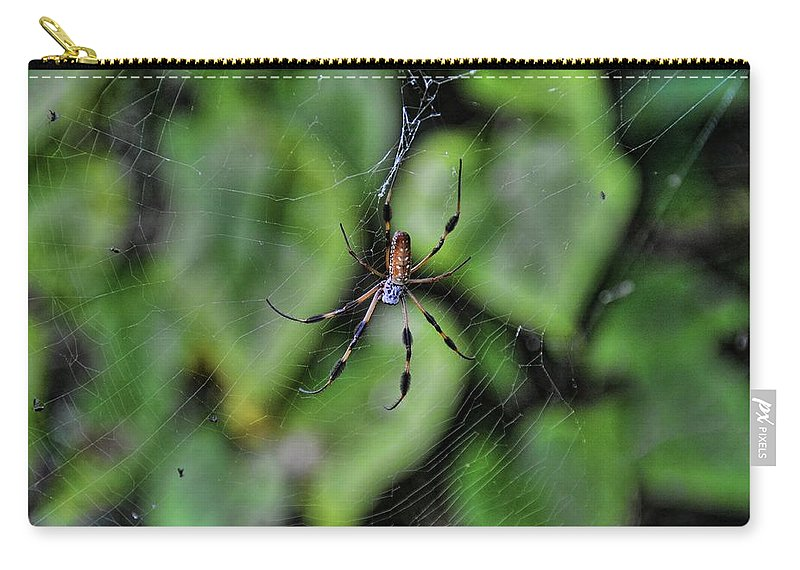 Spider Carry-all Pouch featuring the photograph Banana Spider by Rich Bodane