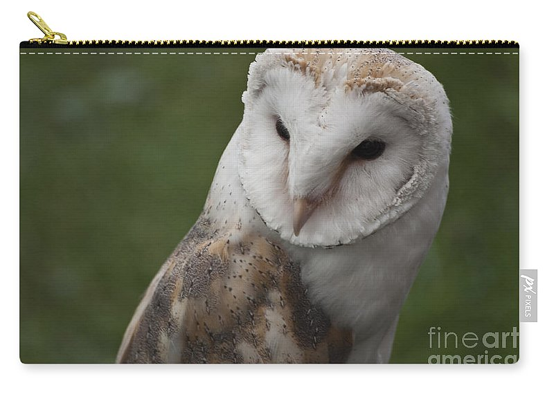 Barn Owl Carry-all Pouch featuring the photograph Barn Owl by Steve Purnell
