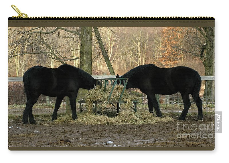 Horse Carry-all Pouch featuring the photograph Barnyard Beauties by Ann Horn