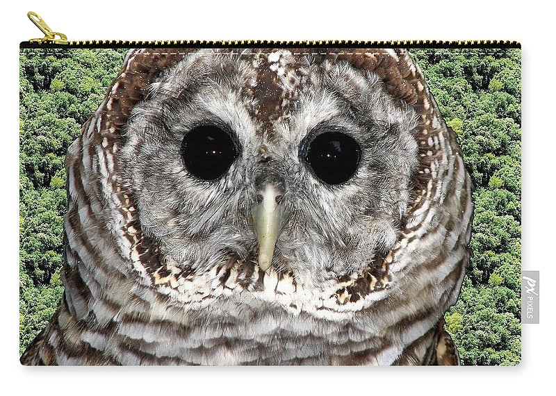 Barred Owl Carry-all Pouch featuring the photograph Barred Owl 1 by Rose Santuci-Sofranko