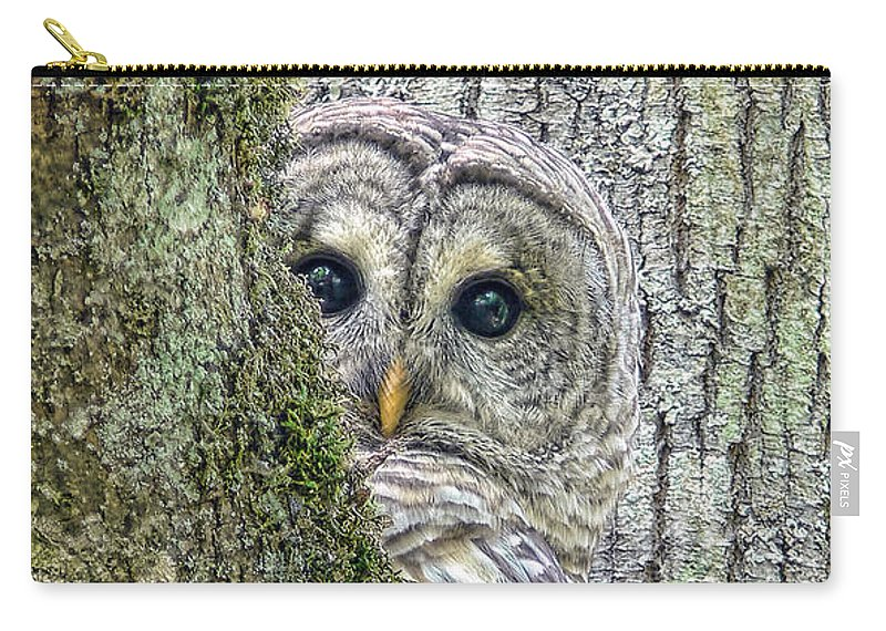 Owl Carry-all Pouch featuring the photograph Barred Owl Peek A Boo by Jennie Marie Schell