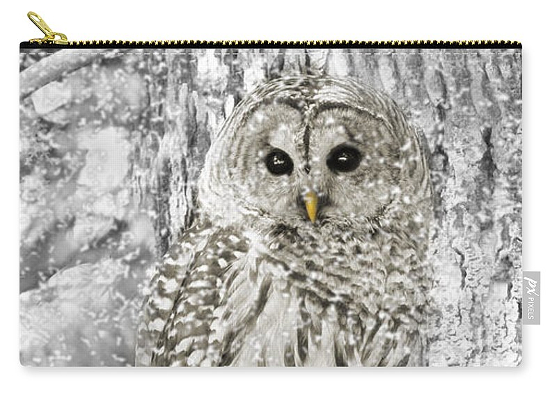 Owl Carry-all Pouch featuring the photograph Barred Owl Snowy Day In The Forest by Jennie Marie Schell