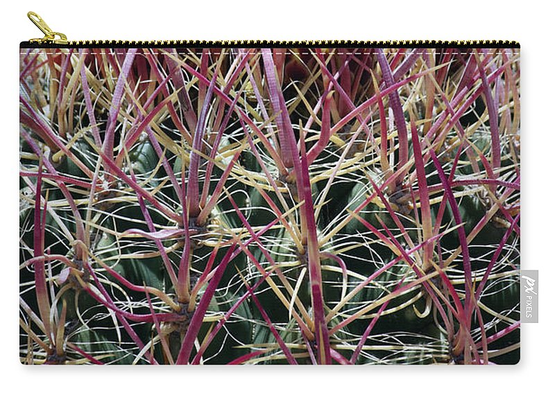 Barrel Cactus Carry-all Pouch featuring the photograph Barrel Cactus Desert Blooms by Linda Dunn