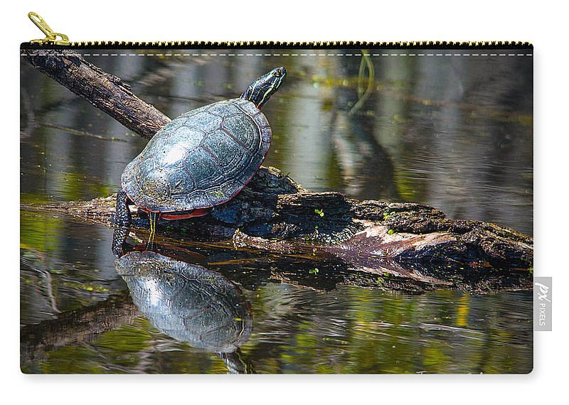 Turtle Carry-all Pouch featuring the photograph Basking Turtle by Jayne Gohr