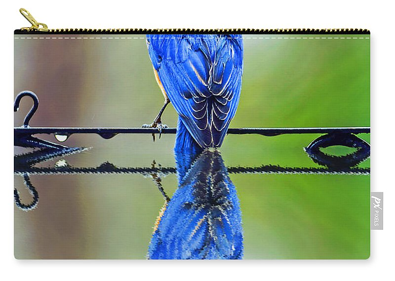 Reflection Carry-all Pouch featuring the photograph Bath Time Reflection by Elvis Vaughn