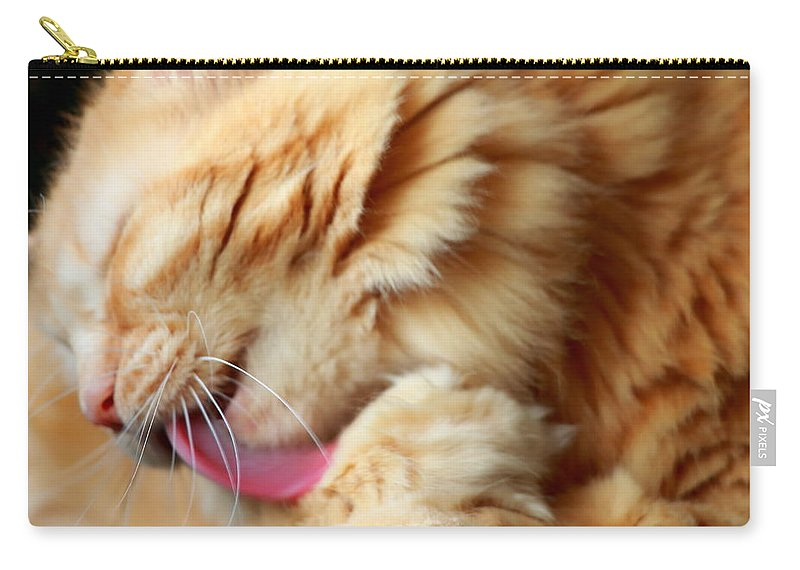 Cats Carry-all Pouch featuring the photograph Bathtime by Andrea Kappler