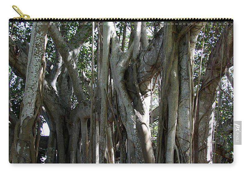 Bayan Tree Carry-all Pouch featuring the photograph Bayan Tree by Christiane Schulze Art And Photography