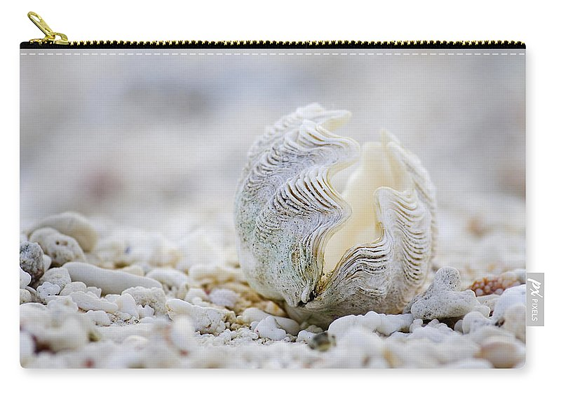 Clam Shell Carry-all Pouch featuring the photograph Beach Clam by Sean Davey
