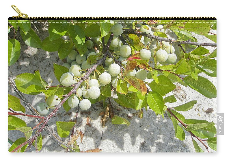 Shrub Carry-all Pouch featuring the photograph Beach Plum - Prunus Maritima - Island Beach State Park Nj by Mother Nature
