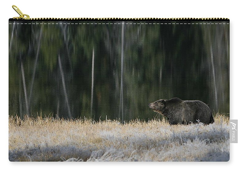Bear Carry-all Pouch featuring the photograph Bear Lake by David Andersen