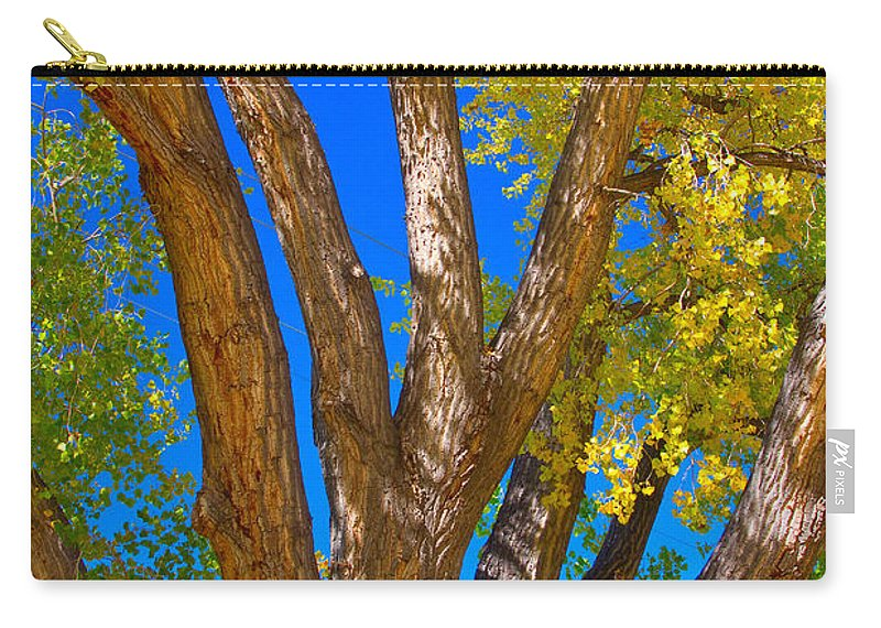 Cottonwood Carry-all Pouch featuring the photograph Beautiful Blue Sky Autumn Day by James BO Insogna