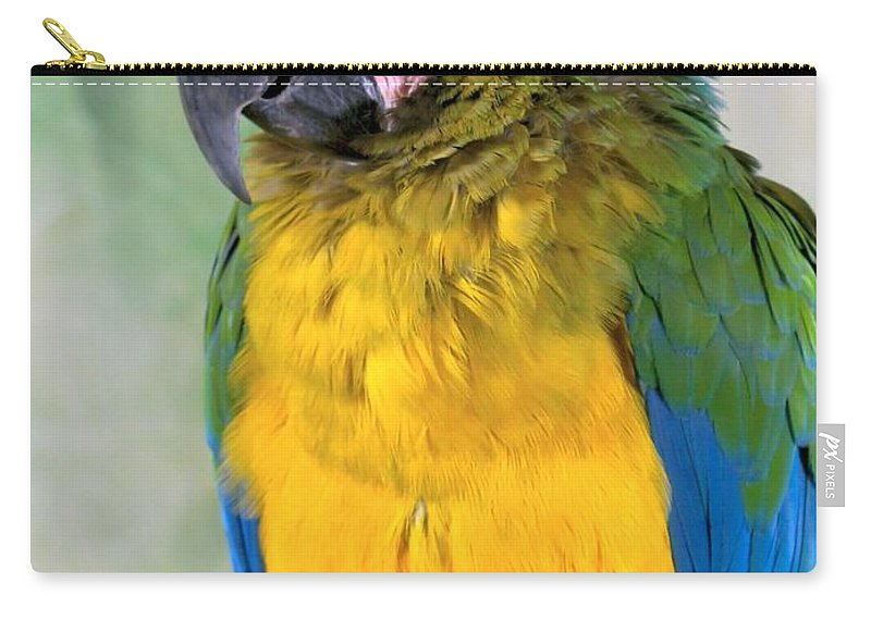 Colorful Carry-all Pouch featuring the photograph Beautiful Molly by Lingfai Leung