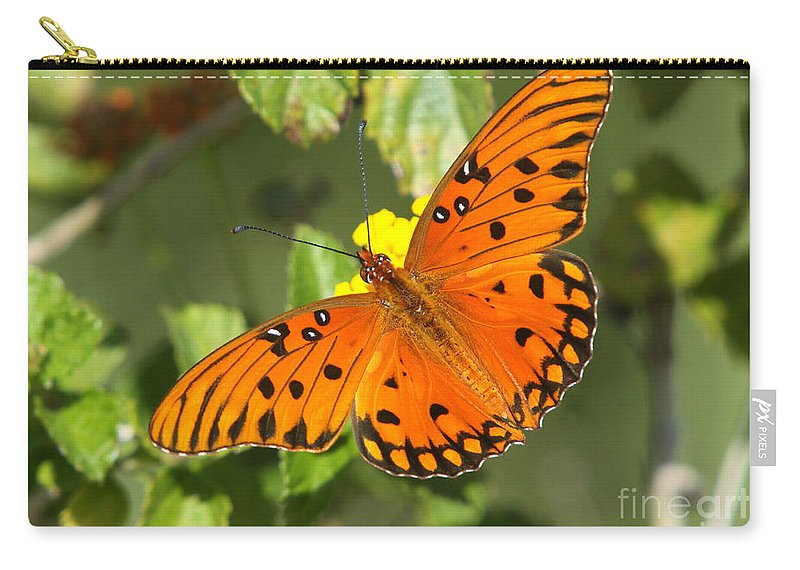 Butterfly Carry-all Pouch featuring the photograph Beautiful Orange Butterfly - Gulf Fritillary by Christiane Schulze Art And Photography