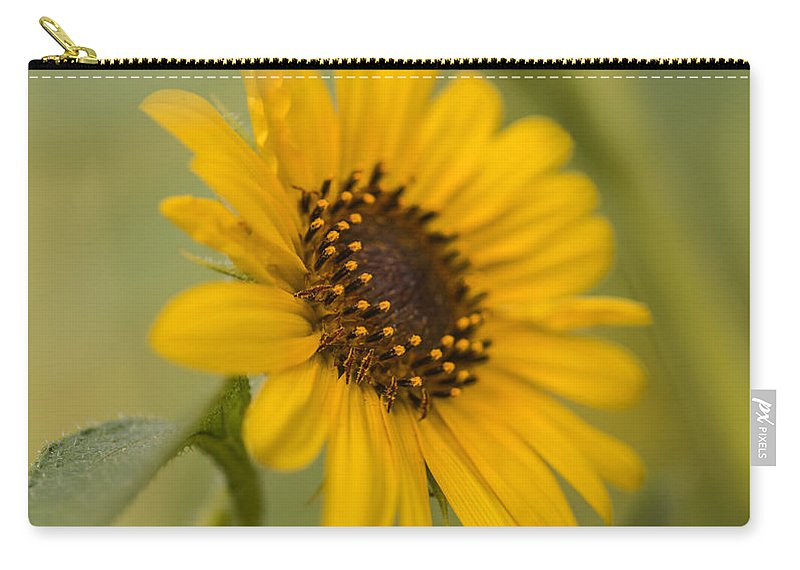 Sunflower Carry-all Pouch featuring the photograph Beautiful Sunflower by Vishwanath Bhat