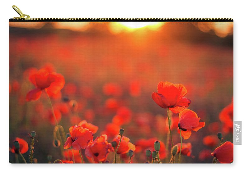 Tranquility Carry-all Pouch featuring the photograph Beautiful Sunset Over Poppy Field by Levente Bodo