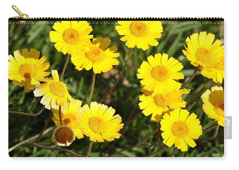 Beautiful Carry-all Pouch featuring the photograph Beautiful Weeds 32655 by Jerry Sodorff