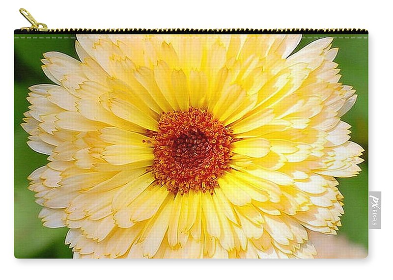 Flower Carry-all Pouch featuring the photograph Beautiful Yellow Marigold Goldbloom Close Up by Taiche Acrylic Art
