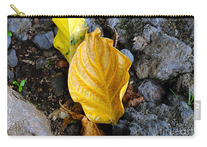 Fine Art Photography Carry-all Pouch featuring the photograph Beauty Among The Rocks by Patricia Griffin Brett