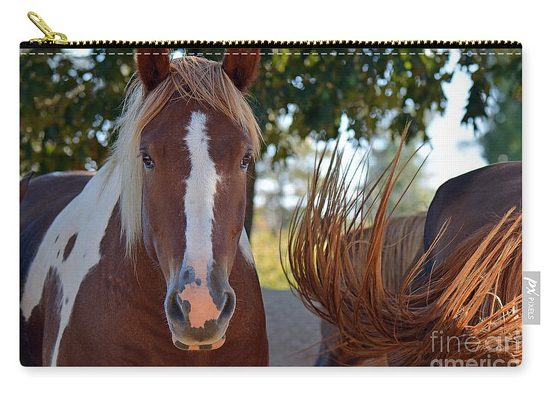 Horses Carry-all Pouch featuring the photograph Beauty And The Swish by Barb Dalton