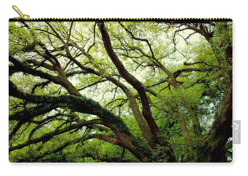 Oak Trees Carry-all Pouch featuring the photograph Beauty In Time by Karen Wiles