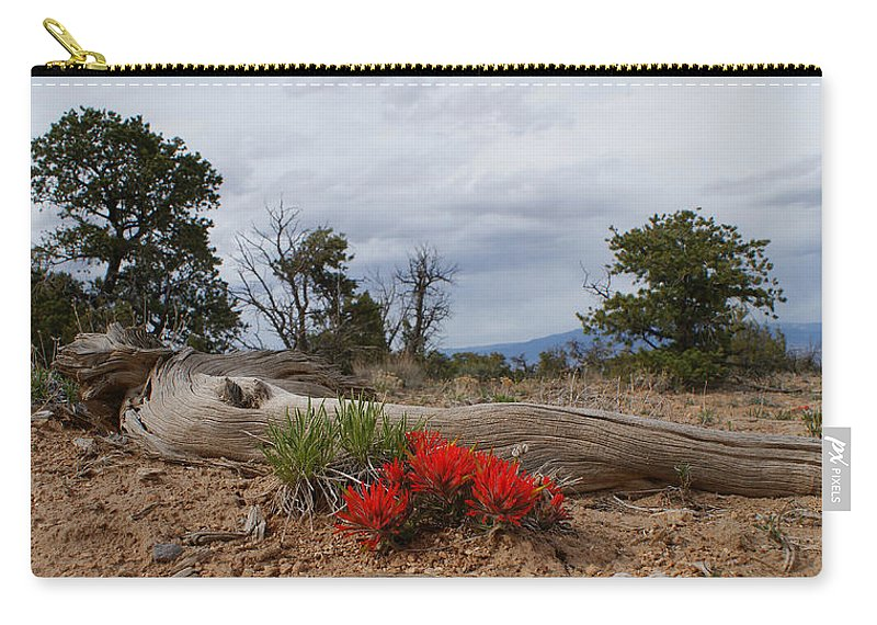 Beauty On 25 Mesa Panoramic Carry-all Pouch featuring the photograph Beauty On 25 Mesa Panoramic by Ernie Echols
