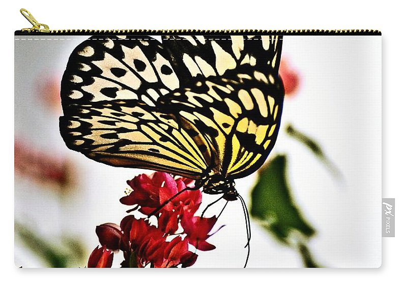 Butterfly Carry-all Pouch featuring the photograph Beauty Wing by Marty Koch