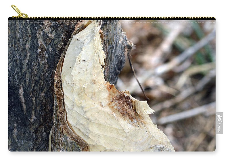 Tree Carry-all Pouch featuring the photograph Beaver Marks by Brent Dolliver