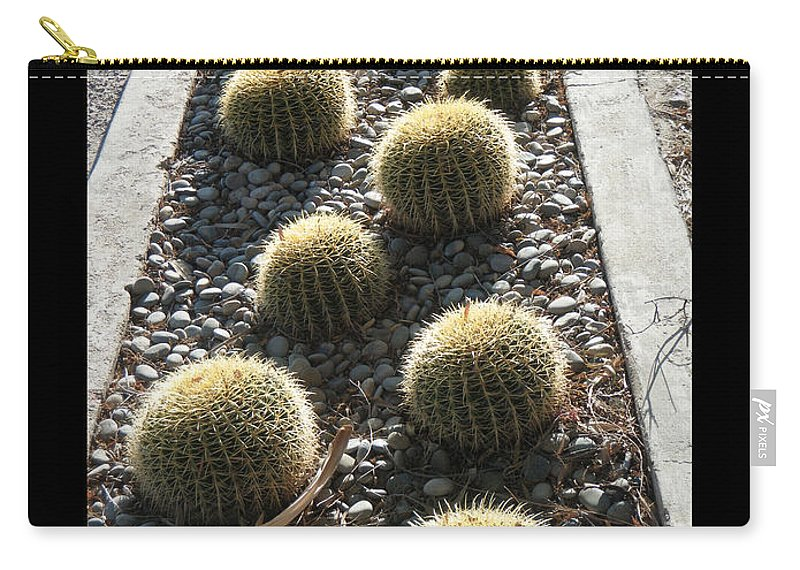 Arizona Carry-all Pouch featuring the photograph Bed Of Barrel Cacti by Tamara Kulish