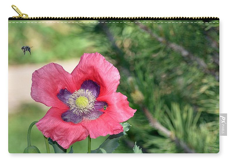 Zion Carry-all Pouch featuring the photograph Bee A Flower by Image Takers Photography LLC