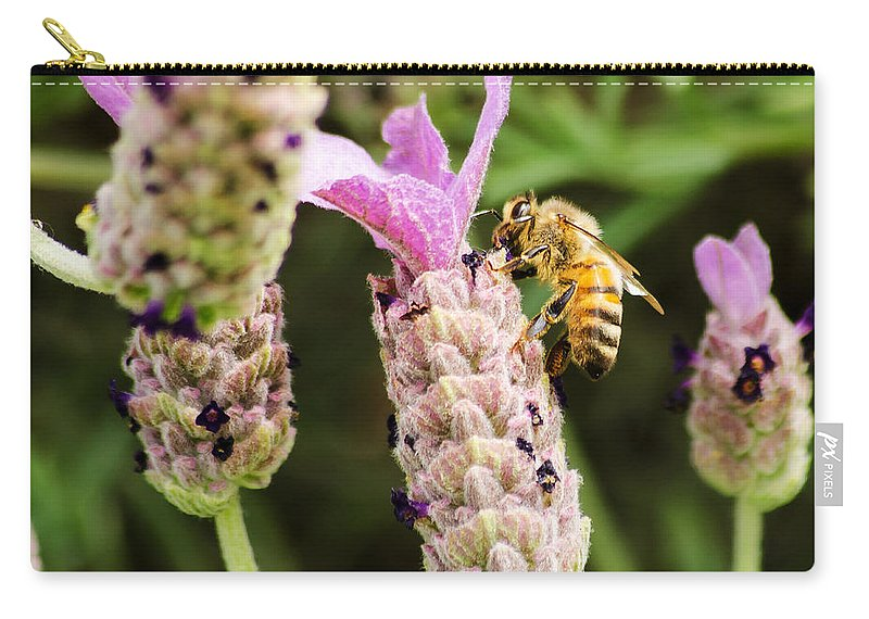 Dallas Carry-all Pouch featuring the photograph Bee At Work Here by Allen Sheffield
