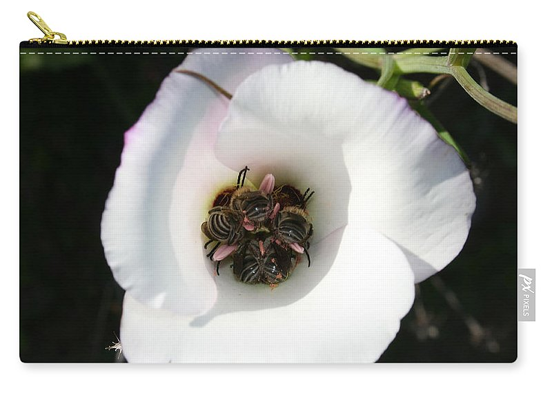 Bee-in Carry-all Pouch featuring the photograph Bee-in by Ellen Henneke