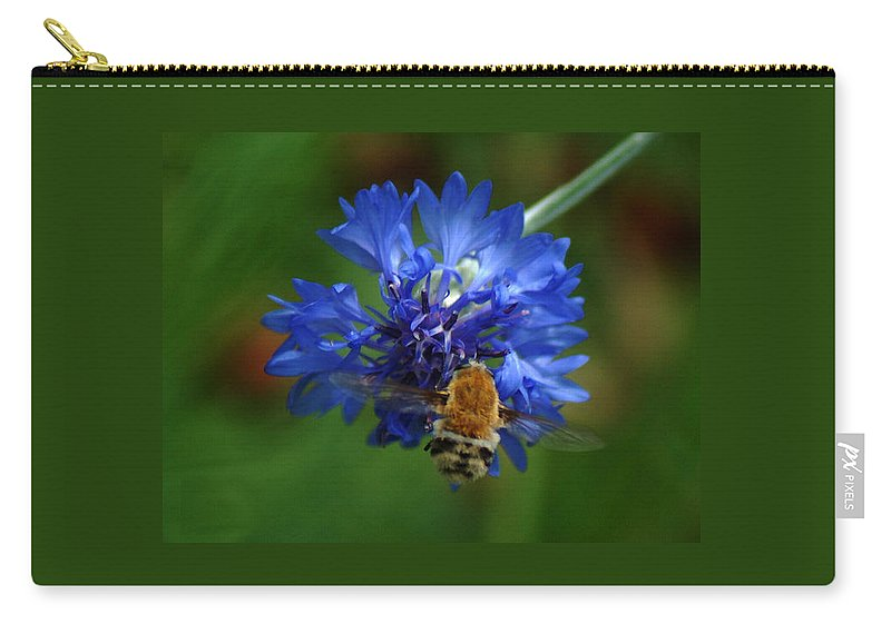 Bee Carry-all Pouch featuring the photograph Bee by Leticia Latocki