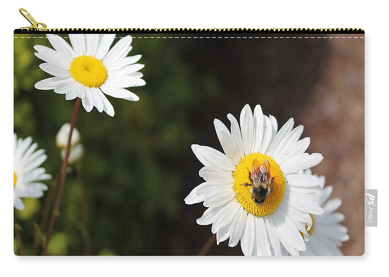 Daisy Carry-all Pouch featuring the photograph Bee On A Daisy 2 by Cathy Anderson