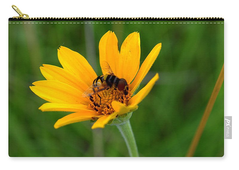 Smooth Oxeye Carry-all Pouch featuring the photograph Bee On A Smooth Oxeye by Mark Hudon