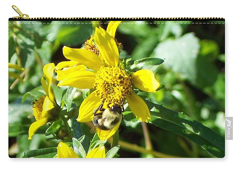 Bee Carry-all Pouch featuring the photograph Bee On Flower by Michelle Miron-Rebbe