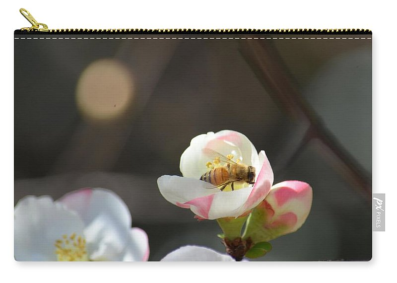 Bee On Japanese Quince Carry-all Pouch featuring the photograph Bee On Japanese Quince by Maria Urso