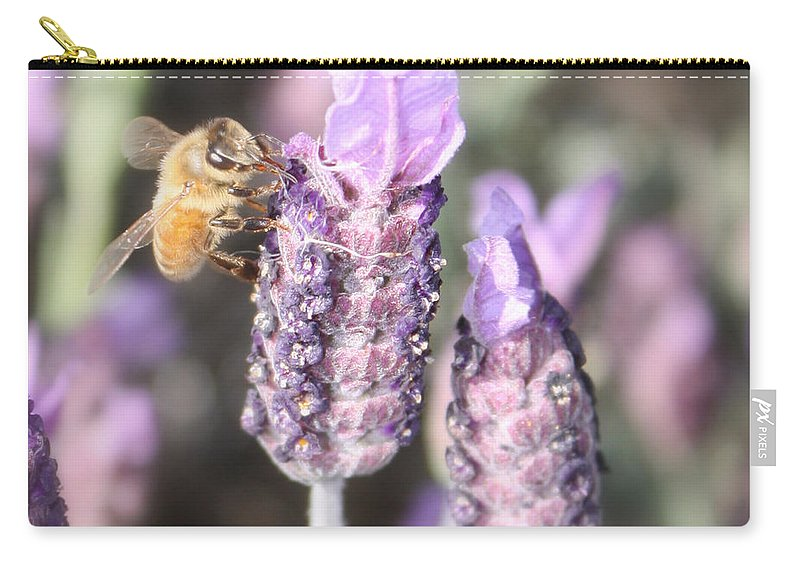 Bee Carry-all Pouch featuring the photograph Bee On Lavender Square by Carol Groenen