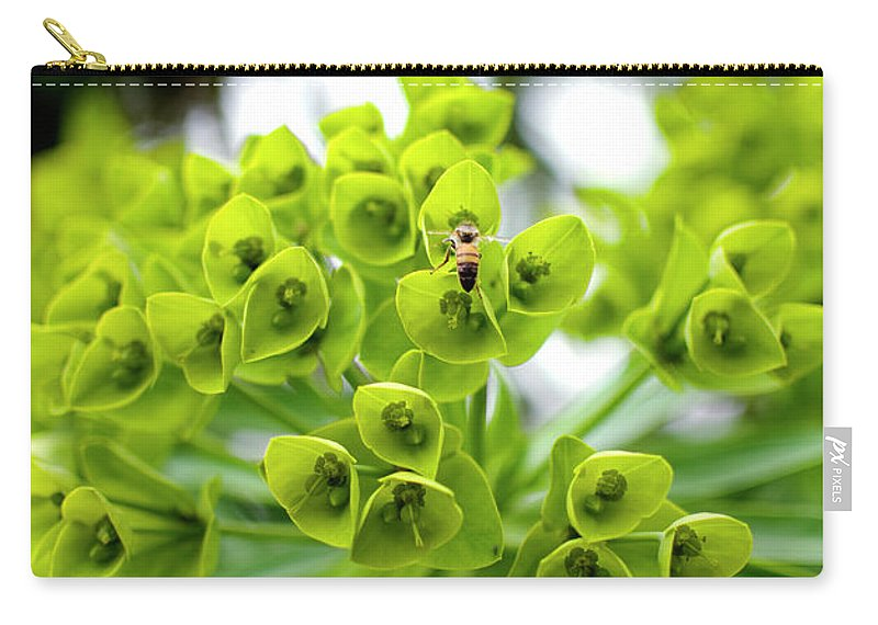 Insect Carry-all Pouch featuring the photograph Bee Pollenating Flower by Pete Starman