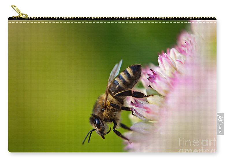 Animal Carry-all Pouch featuring the photograph Bee Sitting On A Flower by John Wadleigh